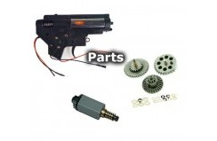 Gearbox/Internal Parts